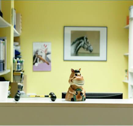 Sprechzeiten der Tierarztpraxis Anne Preising in Oer-Erkenschwick